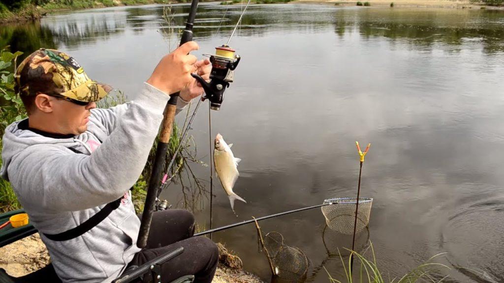 Ловля белой рыбы на фидер