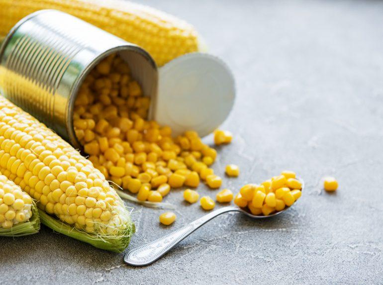 Кукуруза для рыбалки: как выбрать, варить и насаживать