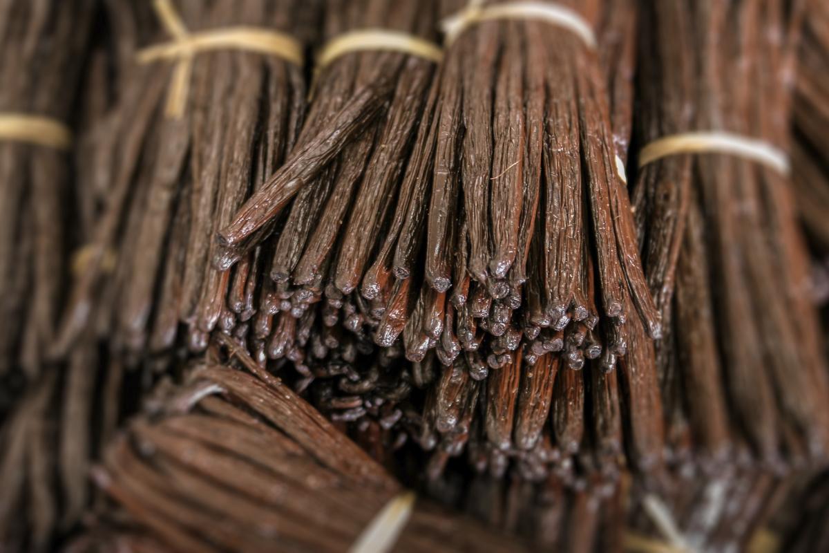 Любимые запахи карпа: какой добавить ароматизатор
